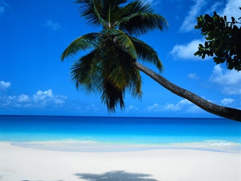 INFORMACE O DOMINIKÁNSKÉ REPUBLICE
