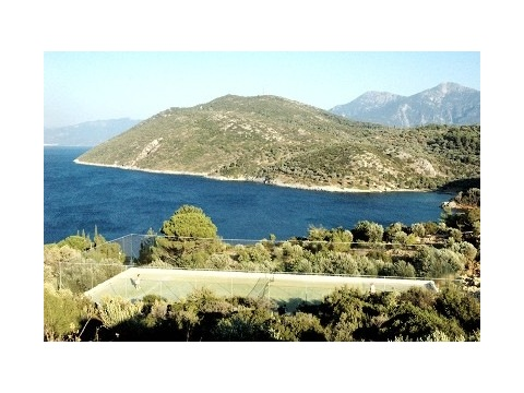 �ecko - Samos
