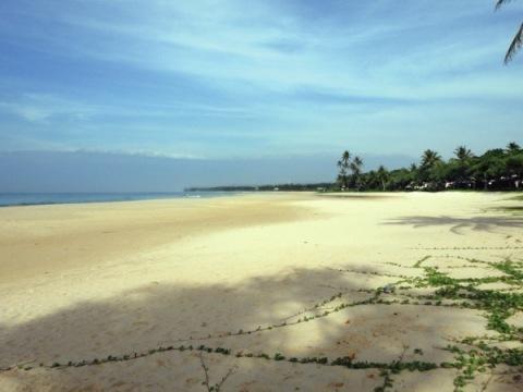 Srí Lanka - Kogala