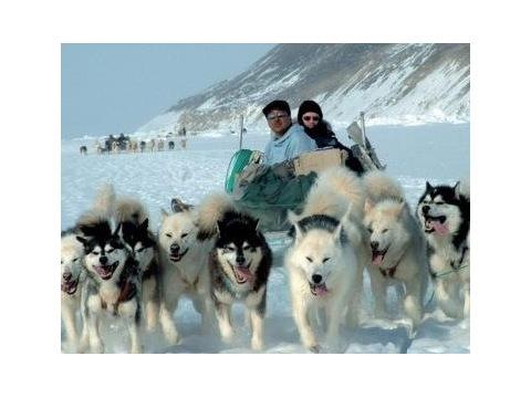 Grónsko - Poznávací zájezdy