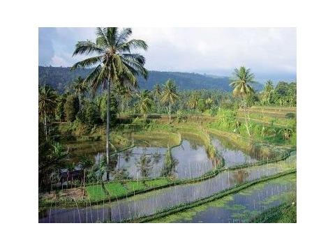 Indonésie - Kombinované zájezdy