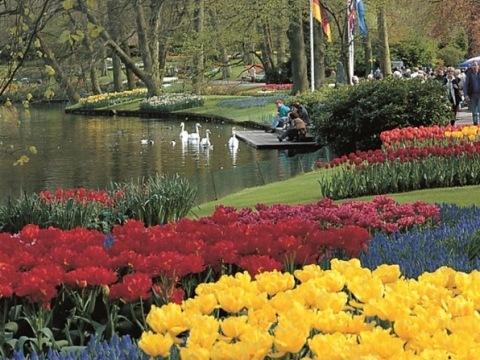 Amsterdam akvetoucí zahrady Keukenhof