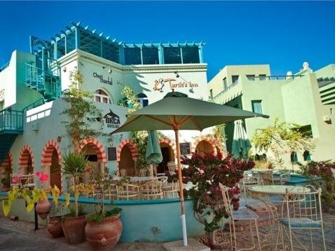 Turtle's Inn El Gouna