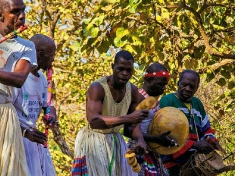 Senegambie - procházka se lvy