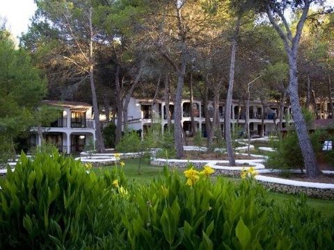 Sol Park
