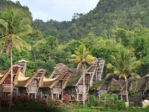 Indonésie - Jáva, Bali, Sulawesi
