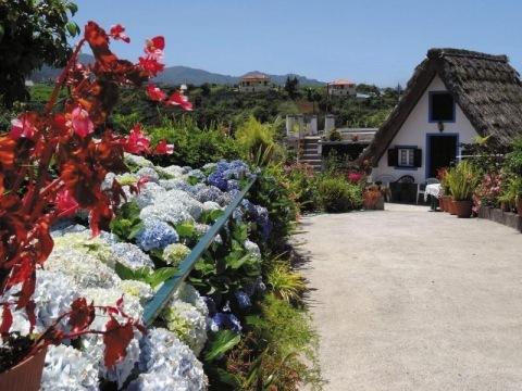 Madeira - Okruh ostrovem vůní