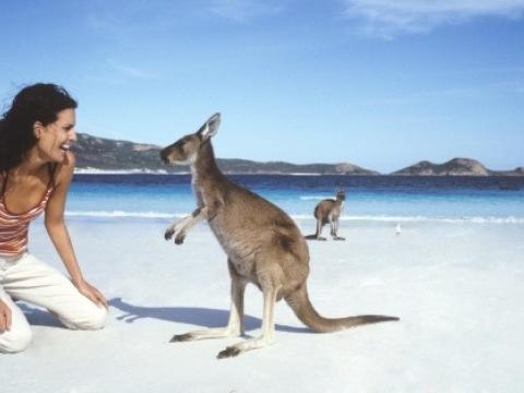 Austrálie - východní pobřeží | Fly & Drive