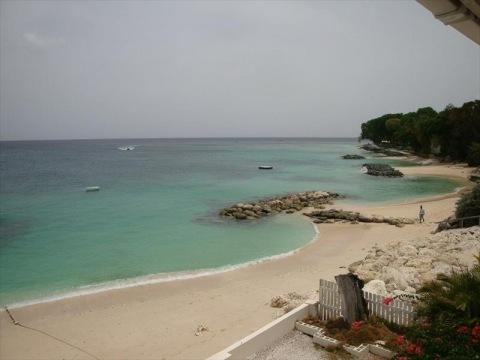 Starfish Discovery Bay