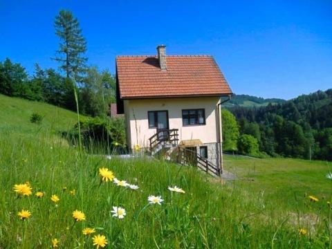 Chata Malá Bystřice 3831
